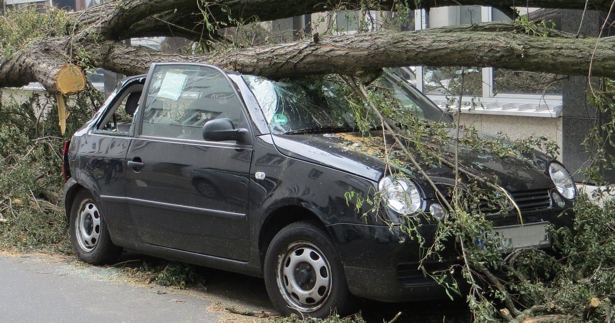 Was ist bei einem Sturmschaden versichert?